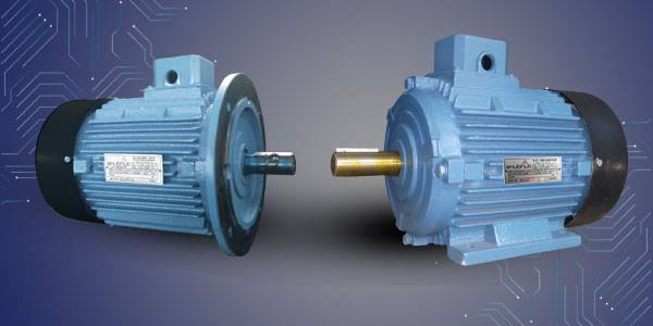 Dual Speed / Two Speed Motor